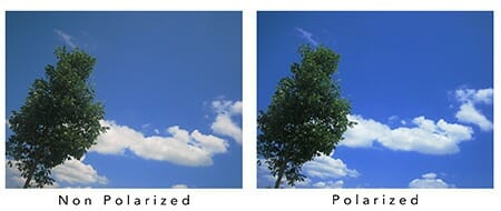 A Guide to Polarization Optics, Filters and More ...